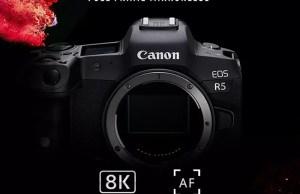 Canon EOS R6, R5 dan Lensa RF Baru Akan Dirilis Juli 2020