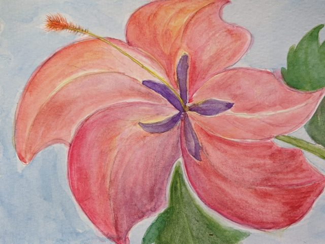 Watercolor painting of a pink flower