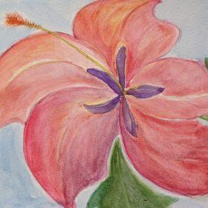 Georgia O'Keefe Hibiscus Project