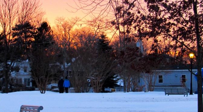 Snowfall Scene at Nightfall