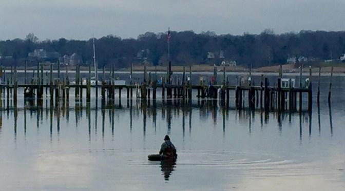 Focus: Riverfront Reflections