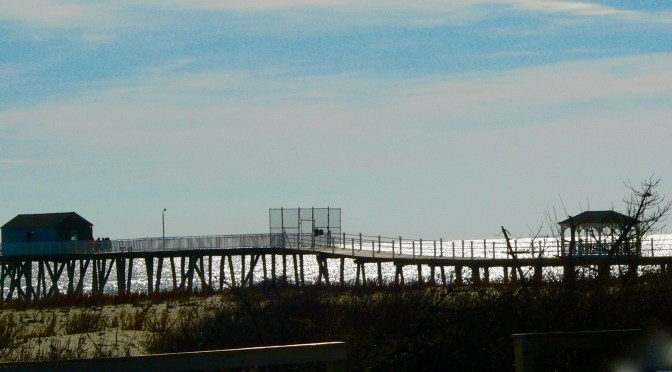 Focus: Southern Coastal Exposure
