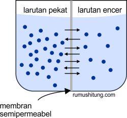 tekanan osmotik - sifat koligatif larutan