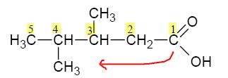 penomoran gugus dimulai dari letak atom karboksil