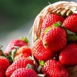 Běžci, dopřejte si jahody