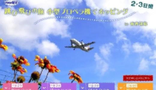 JALのプロペラ機ホッピングでのJGC回数修行も面白そうだ!