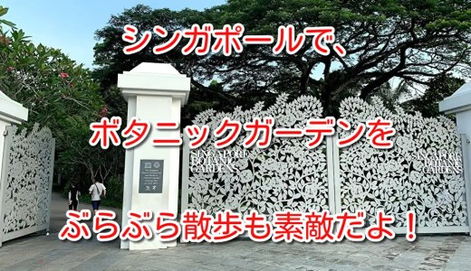 シンガポール「ボタニックガーデン(シンガポール植物園)」散歩に最適!世界遺産にもなってた(°0°)