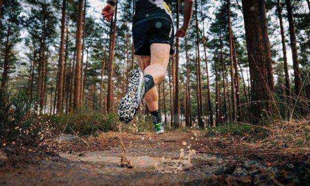 Adidas Terrex Speed SG, une paire dynamique et accrocheuse pour les sessions humides et boueuses.
