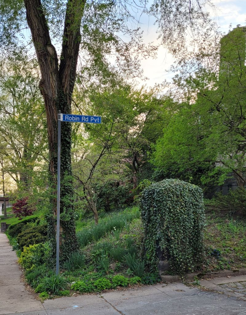 Private Robin Road