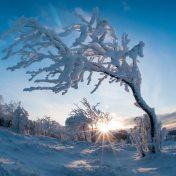 winter solstice
