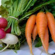 csa carrots
