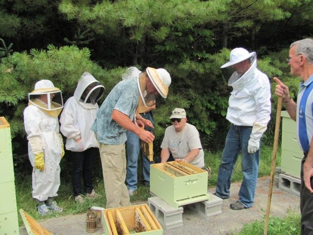 kennebec-somerset open-hive