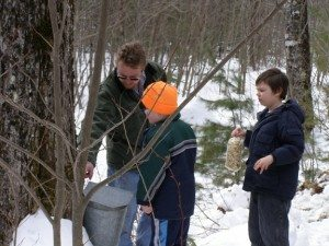 traditional maple sap bucket