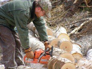 chunking firewood