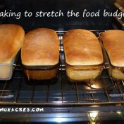 baking to stretch the food budget