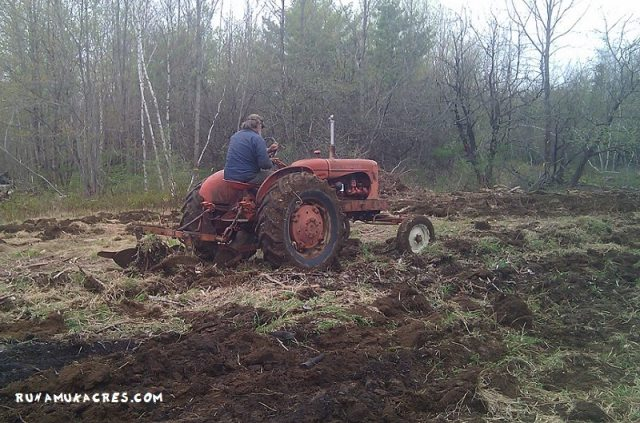 plowing the market garden