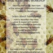 basic beekeeping crash course