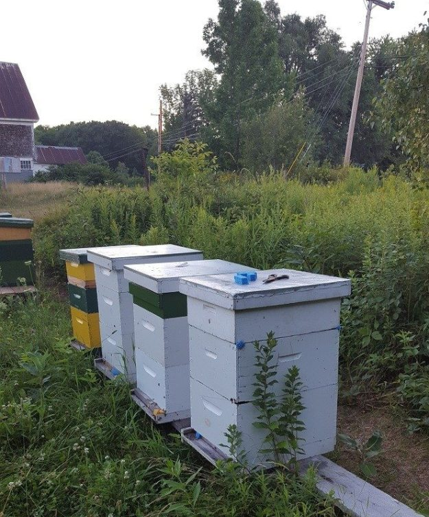 Getting hives ready to move