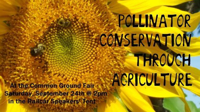 pollinator conservation at common ground fair