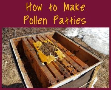 how to make pollen patties