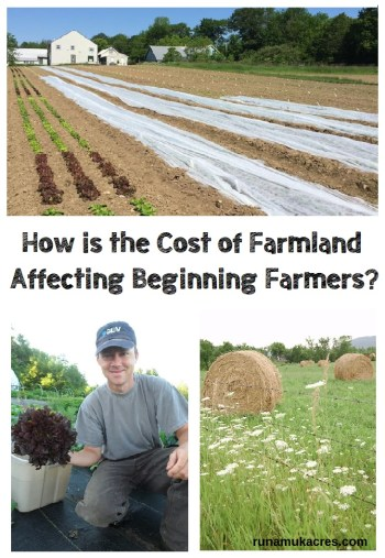 how is the cost of farmland affecting beginning farmers