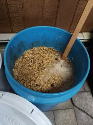 fermenting chicken feed in winter