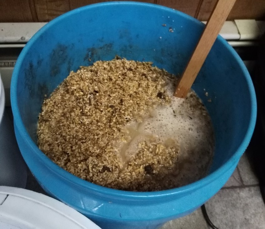 fermenting chicken feed in winter