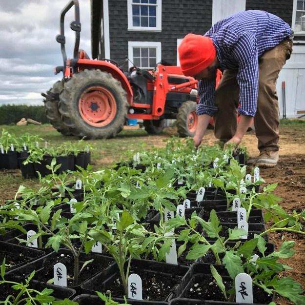 farming as a way forward for economically depressed regions