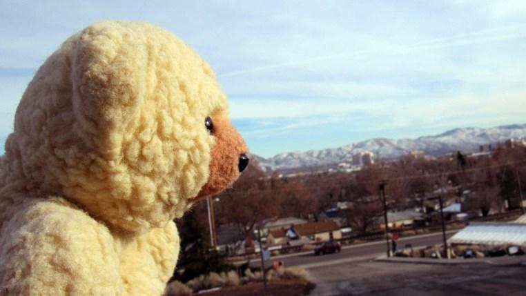 Ambyr Noelle viewing the Reno skyline