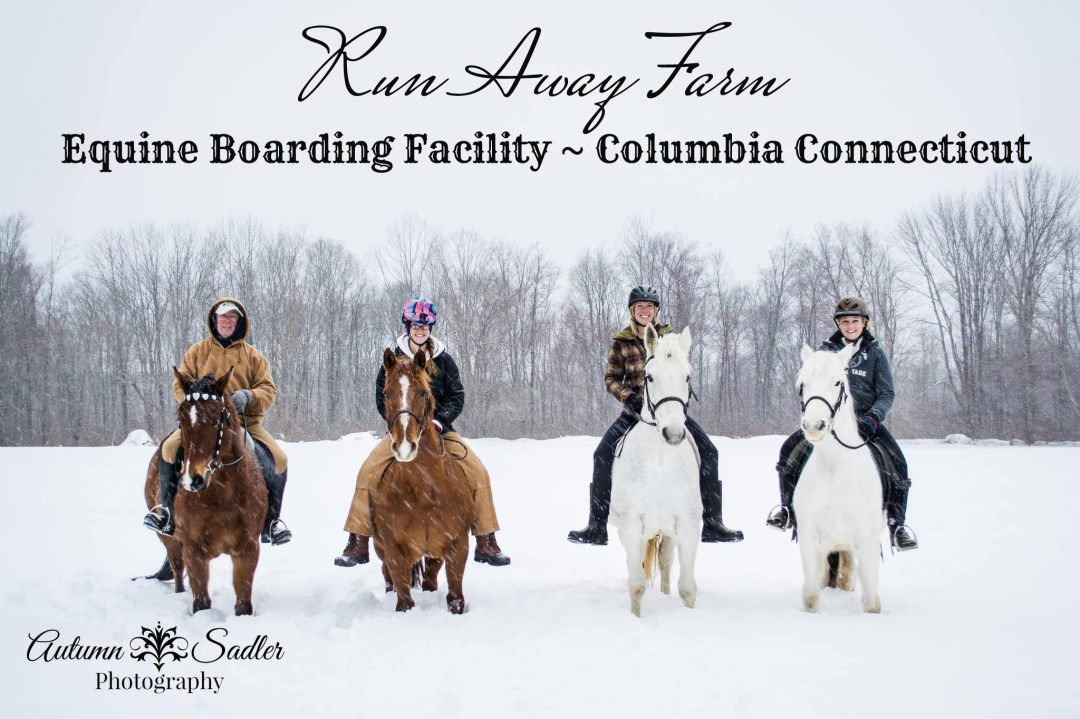 Run Away Farm Equine Boarding Facility Columbia CT