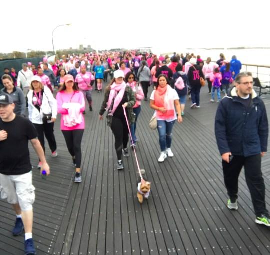 widow breast cancer walk