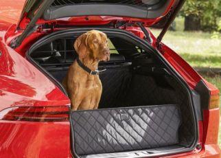 Jaguar presenta una nueva linea exclusiva de accesorios para mascotas