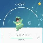 【Pokémon GO】2019年一発目コミュニティデイ(ワニノコ)レポ。新宿西口ルートなど。