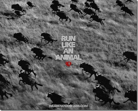 run like an animal motivation thumb Motivation and Music Monday–Recovery Songs