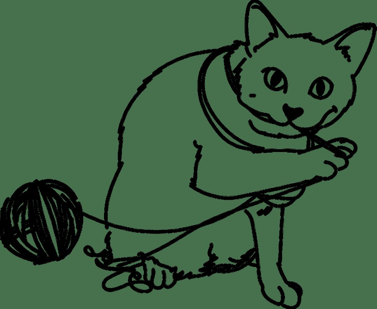 kot z wełną