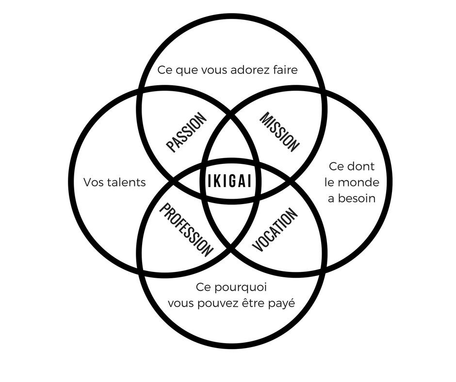 test-ikigai-methode