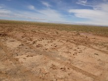 this is what a Mongolian major road looks like, today. (!!)