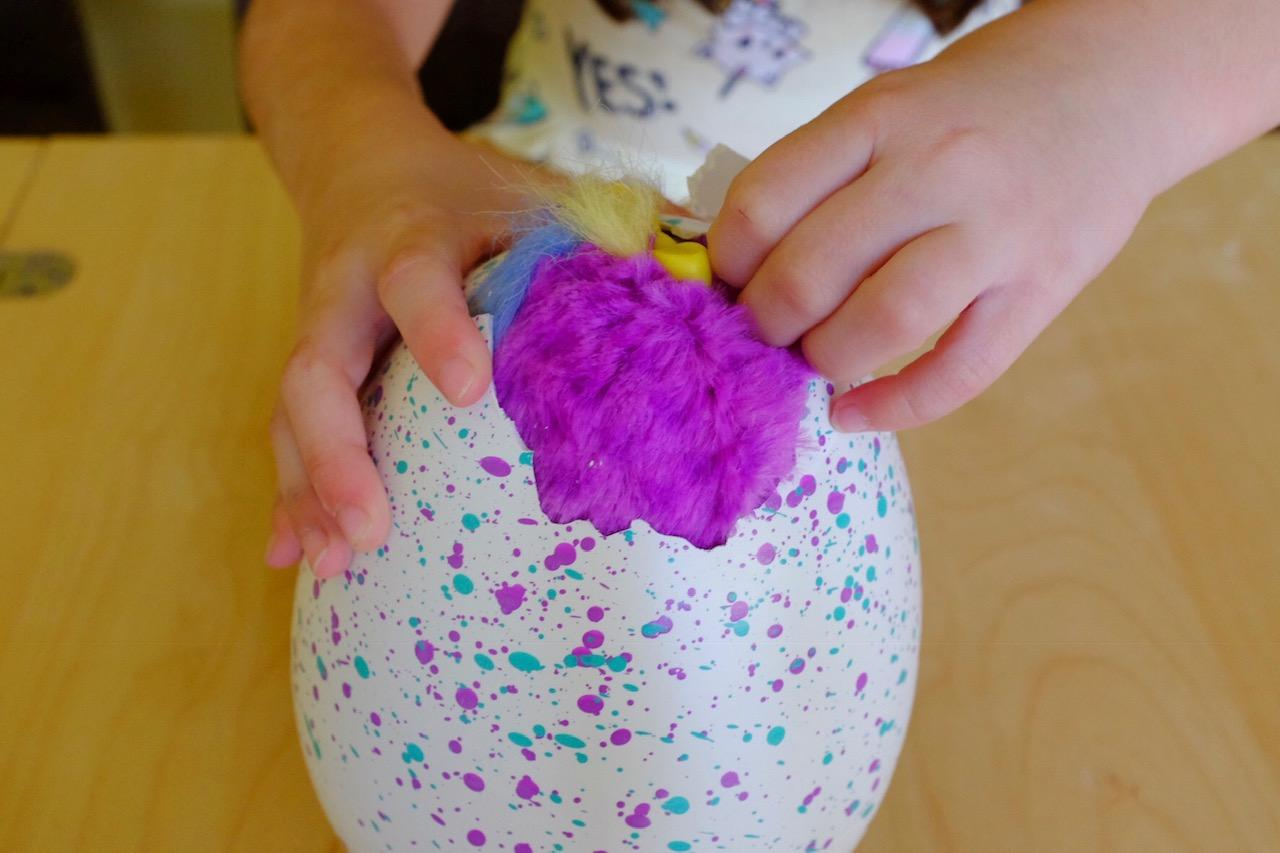 Girl peeling shell off Hatchimals HatchiBabies hatching egg