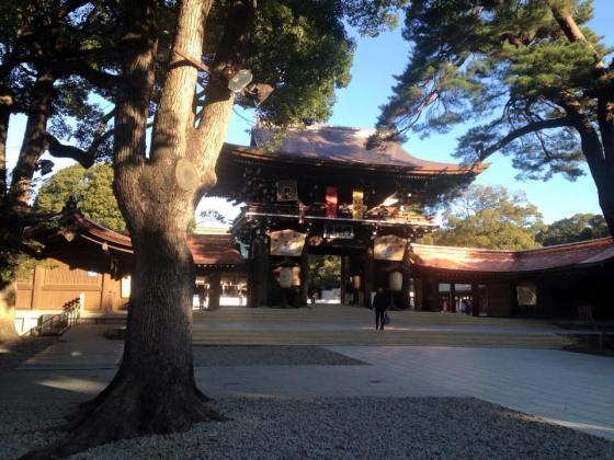 Meiji Jingu shrine - spot the blogger :)