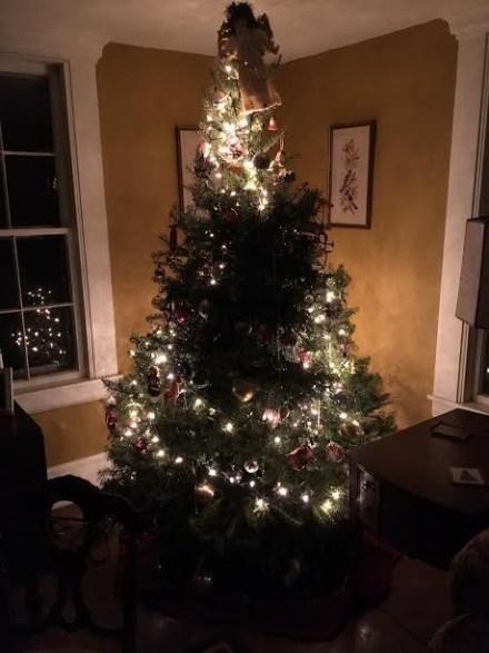 tree with half lights