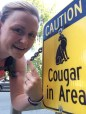 cougar in area