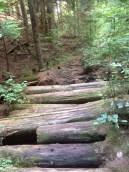 Sandero Diez Vistas Trail, Coquitlam British Columbia
