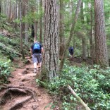 Heading up on Sandero Diez Vistas Trail, Coquitlam British Columbia