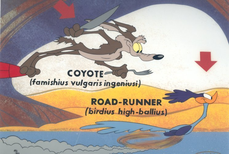 Did Wile E. Coyote ever catch Road Runner?
