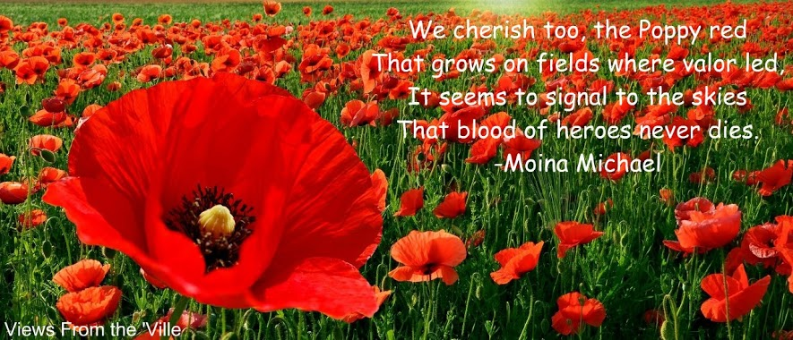 "Poppies illustrating the poem ""We Shall Keep the Faith"" by Moina Michael"