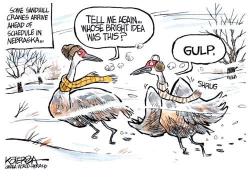 Polar Vortex cartoon