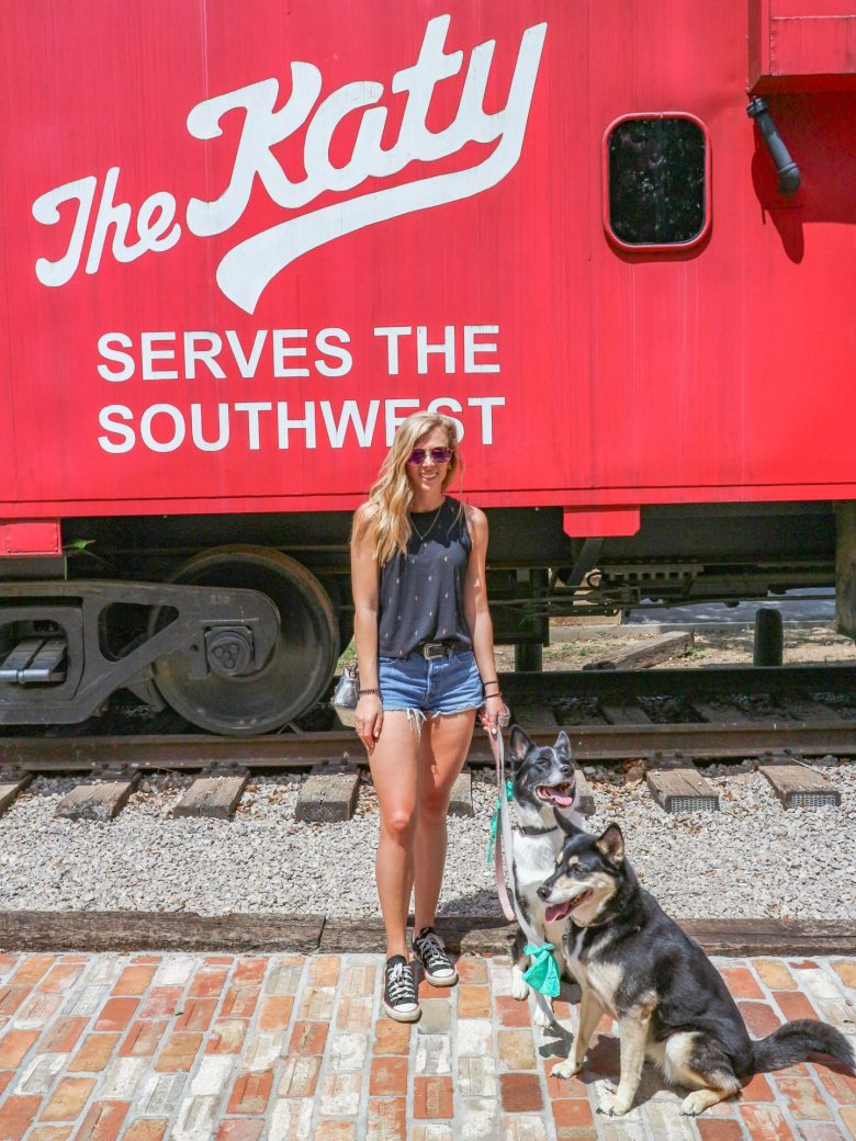 Dog friendly patios in Dallas featured by top Dallas blog, Running in Heels