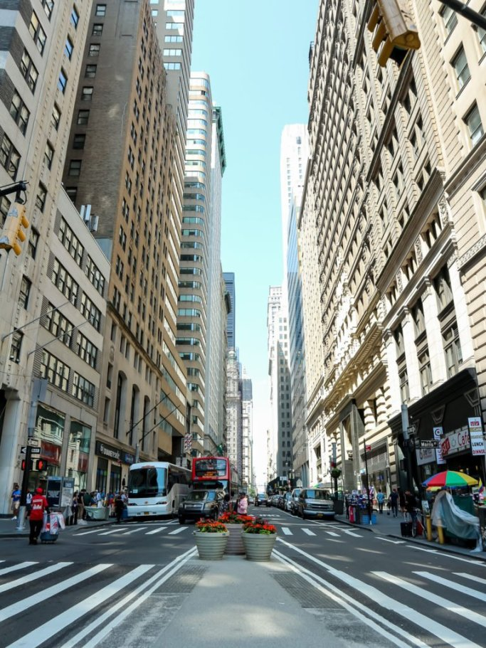 Where to Wander in NYC