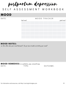 Postpartum Depression Self Assessment Workbook Preview
