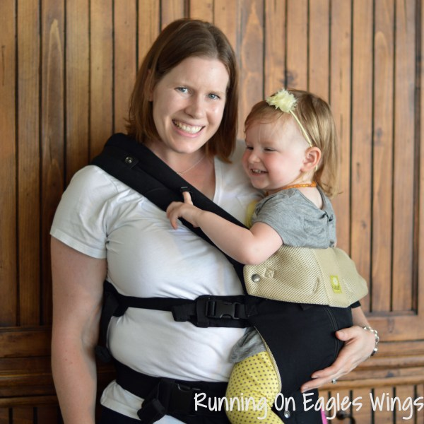 LILLEbaby All Seasons Hip Carry